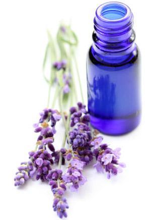 Tinh dầu oải hương giúp làn da trắng hồng điều trị những vết thâm hiệu quả