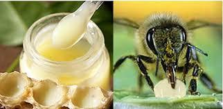 Tuyệt chiêu xóa tan bọng mắt bằng sữa ong chúa nhanh chóng
